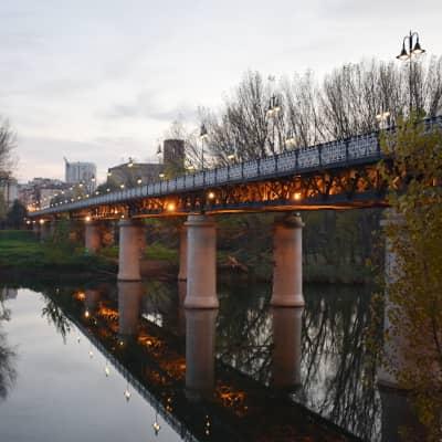 Free Tour Logrono Puente de Hierro