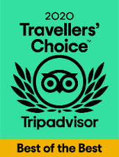 Free Tour Logroño -Travellers Choice de Trip Advisor 2